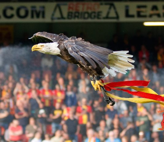 Go Ahead Eagles Harly